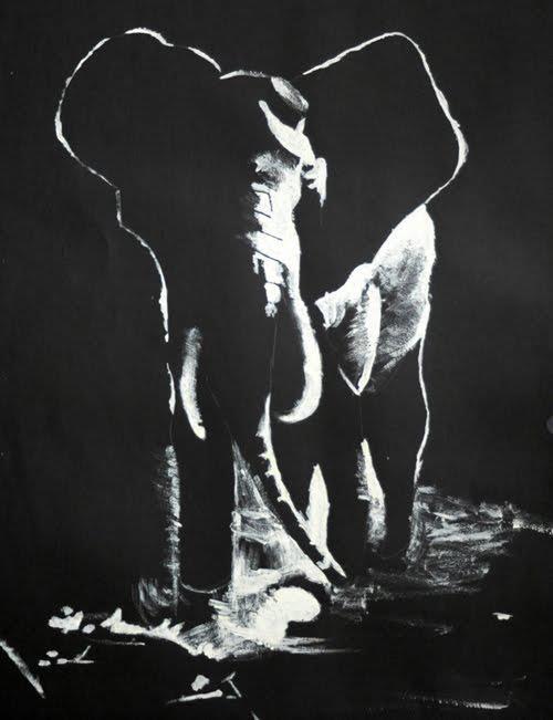 elephant-noir-et-blanc